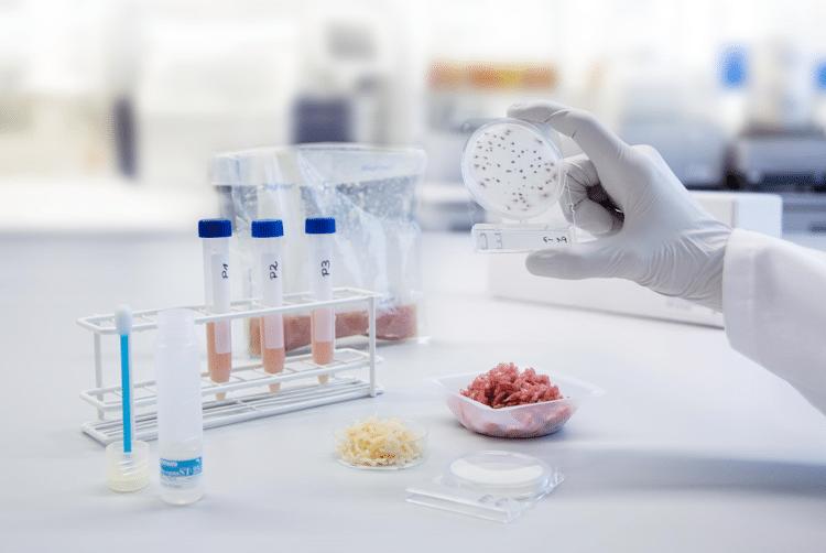 HPP-Food-HACCP-Analysis