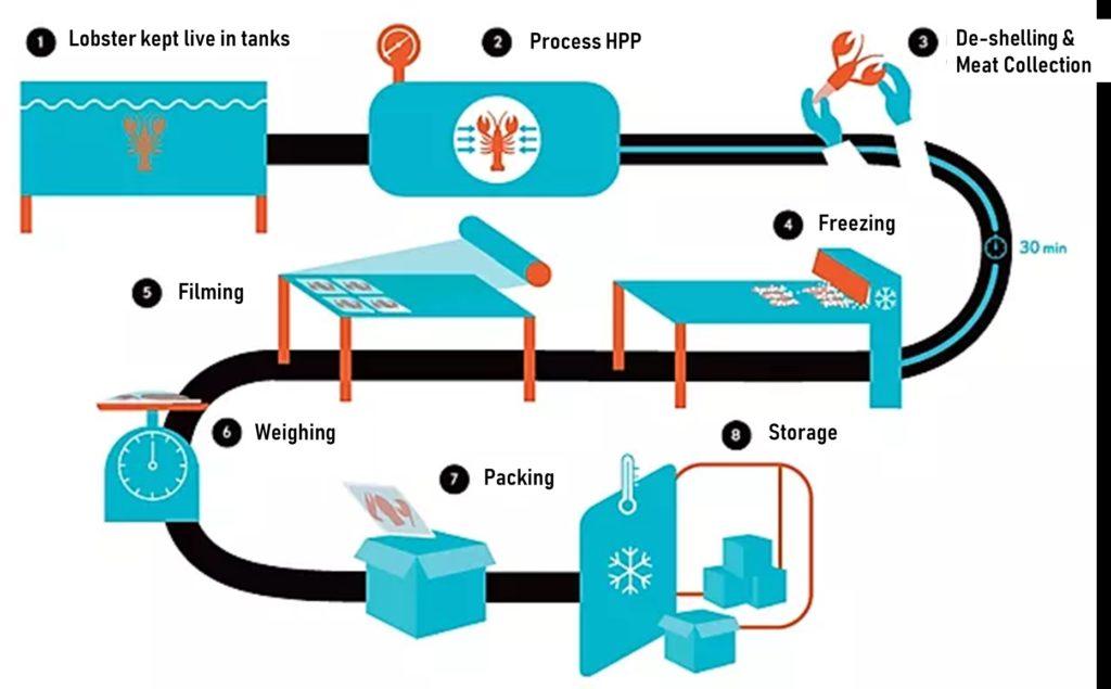 Fig. 2. Línea de proceso para la extracción de carne de langosta. Fuente: Cinq Degrés Ouest: Nos Philosophie.