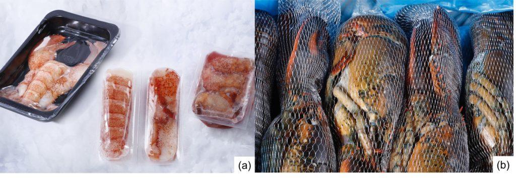 Fig. 3. Presentaciones comerciales de langosta HPP sin cocer: (a) Langosta entera, colas y pinzas, sin cáscara; (b) Langosta HPP entera y con caparazón. Fuente: Westmorland Fisheries.