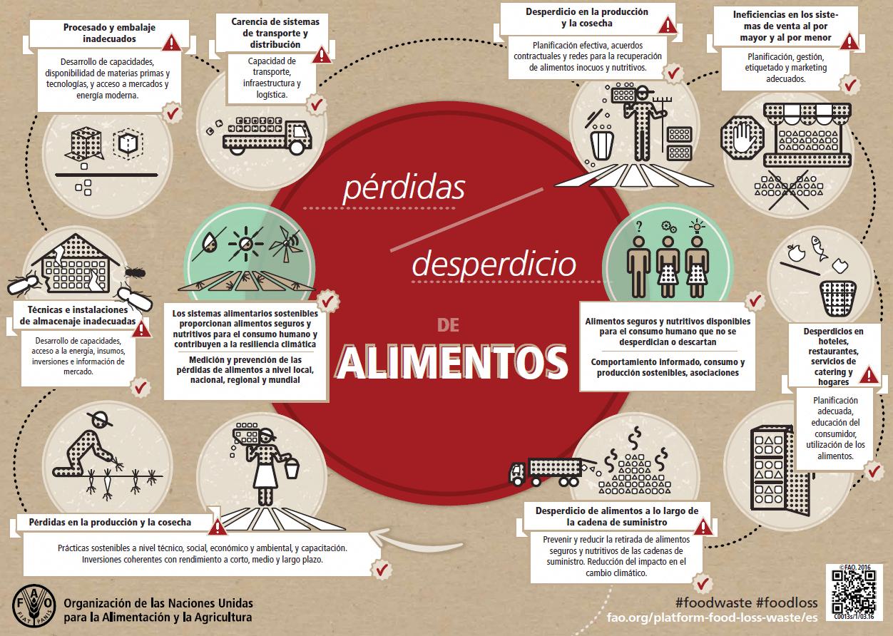 Infografía de la FAO para exponer el origen de la pérdida y desperdicio de alimentos.