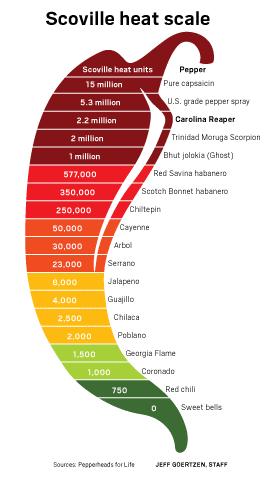 Infografía de los grados de picante en función de la escala de Scoville. Fuente: The Orange Counter Register