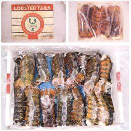 Gama de productos de greenhead lobster