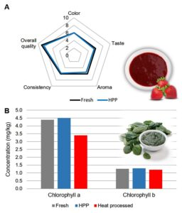 Sensory evaluation of fresh and HPP strawberry purees (A), and chlorophyll concentration in fresh, HPP and heat processed spinach purees (B).