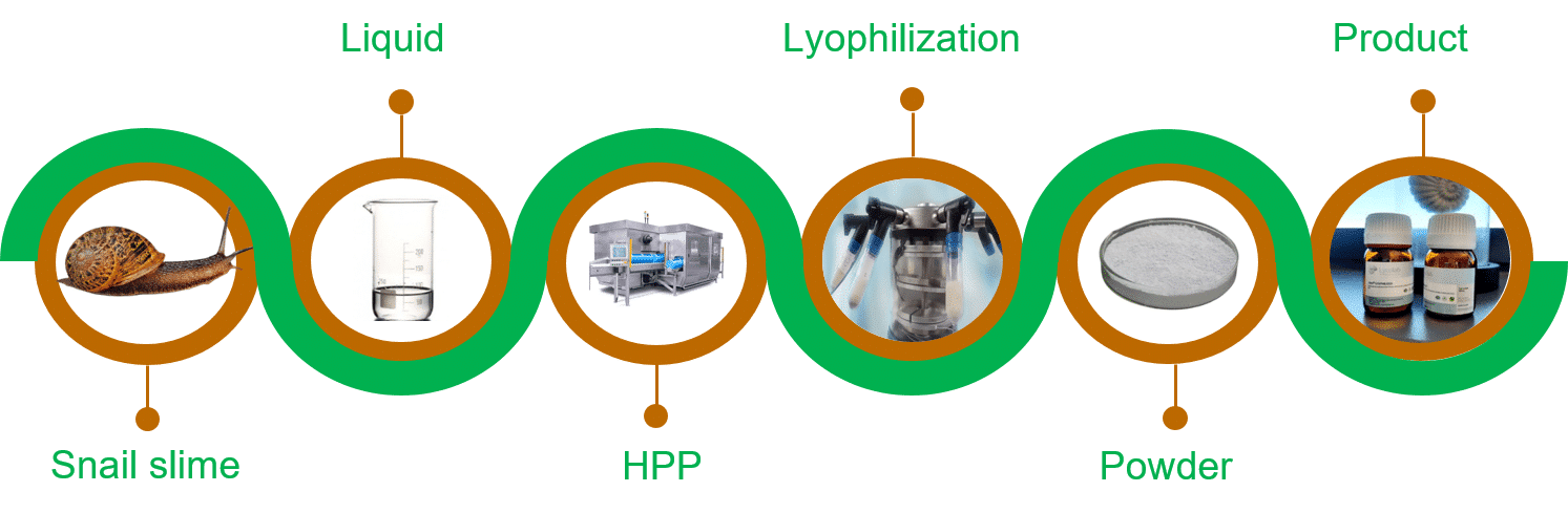 Figure 1. Lycolab process combining HPP and lyophilization to obtain biocollagen
