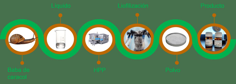 Figura 1. Proceso de Lycolab combinando HPP y liofilización para la obtención de biocolágeno